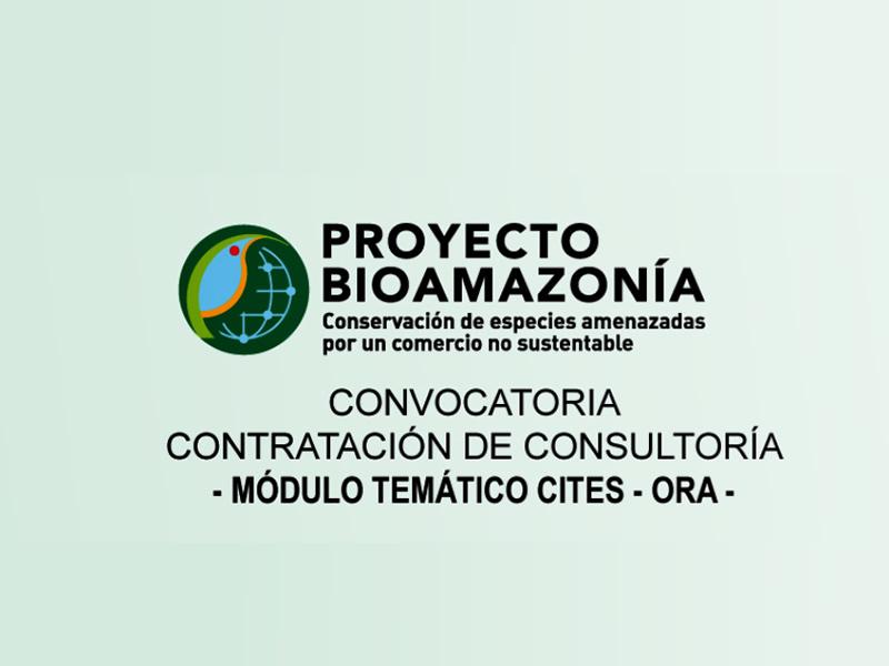 OCT 21, 2020CONVOCATORIA, NEWS, BIOAMAZONÍA PROJECT