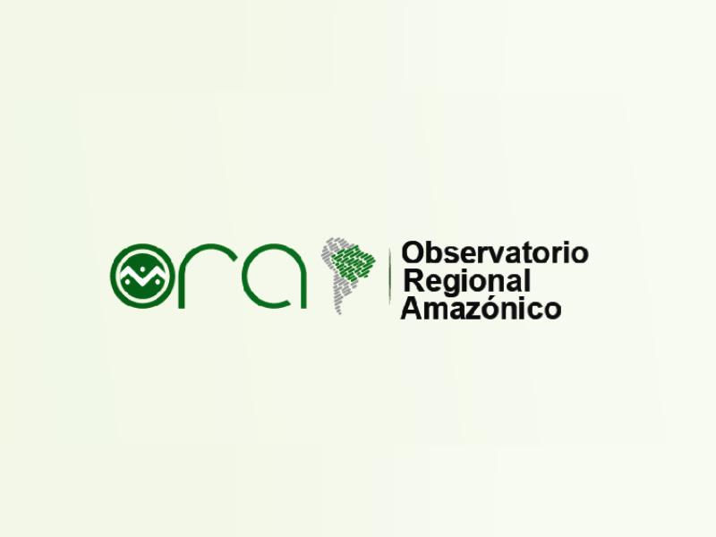 Development of the Amazon Regional Observatory has begun